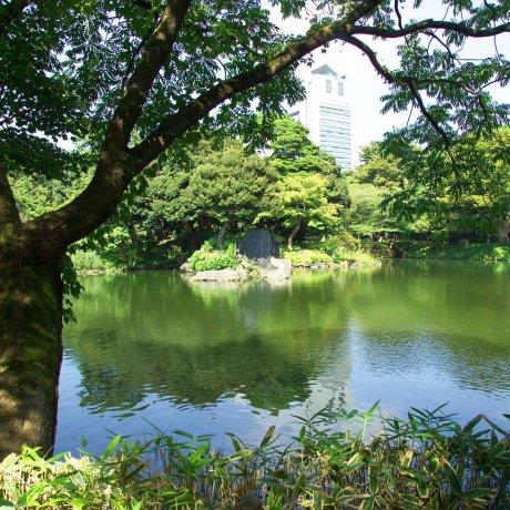 由导游带领的日本东京游