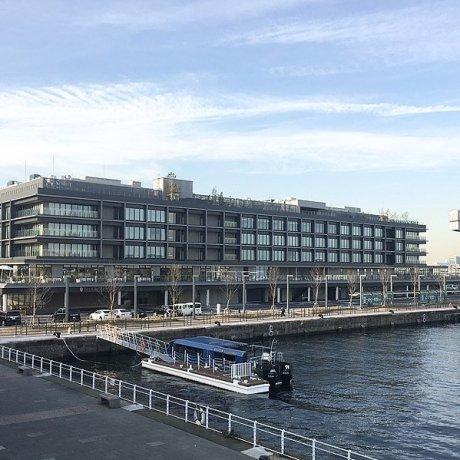 Yokohama Hammerhead